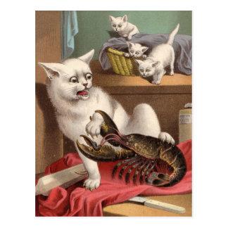 Freche Katzen u. Hummerpostkarte Postkarte