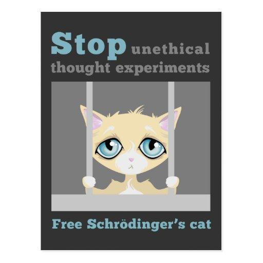 Freien Schrodingers Katze Postkarte