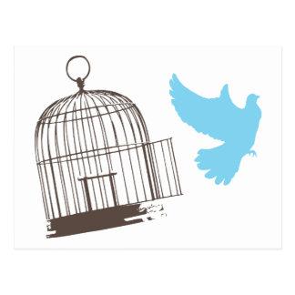 Freier Vogel Postkarte