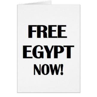 Freies Ägypten jetzt! Karte