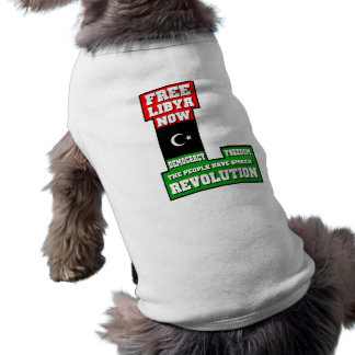 Freies Libyen jetzt Top