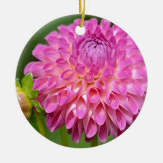 Freigebiges rosa Dahlie-und Knospen-Plakat Keramik Ornament