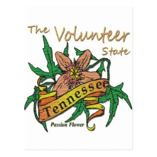 Freiwillige Staats-Leidenschaft 2 Tennessees Postkarte