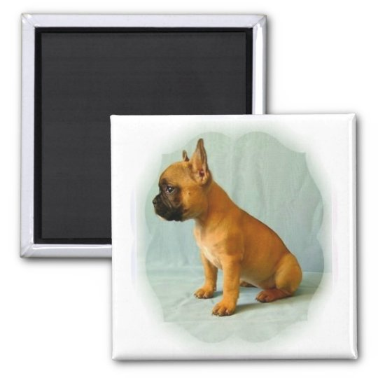 "French Bulldog ""Frenchie Loulou"" Fridge Magnet Quadratischer Magnet"