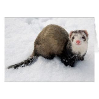 Frettchen, das im Schnee spielt Grußkarte