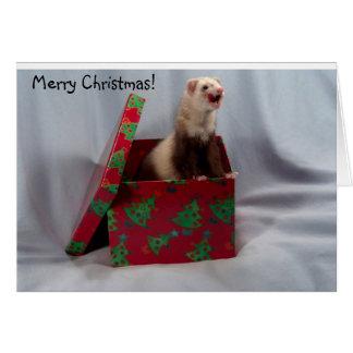 Frettchen-Weihnachtskarte Grußkarte