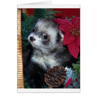 Frettchen-Weihnachtskarte Karte