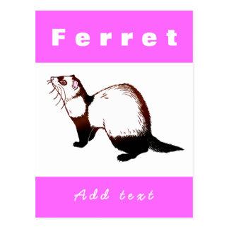 Frettchenfrettchen Postkarte