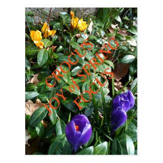 Freude am Frühlings-Krokus Postkarte
