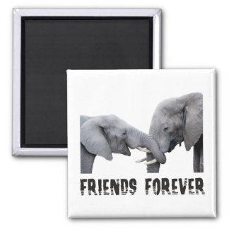 Freund-für immer Elefantumarmen/küssend Quadratischer Magnet