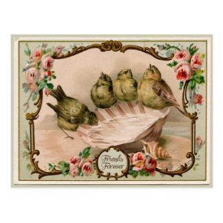 Freund-für immer Vogel-Vintage Postkarte