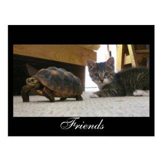 Freund-Postkarte