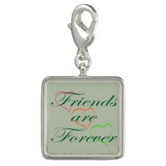 Freunde sind für immer Herzen Charm