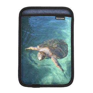 Freundliche Schildkröte in Mexiko Sleeve Für iPad Mini