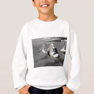 Freundlicher Pelikan Sweatshirt