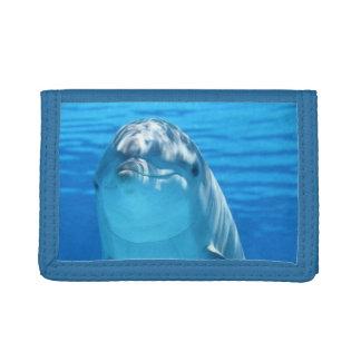 Freundliches Delphin-Foto