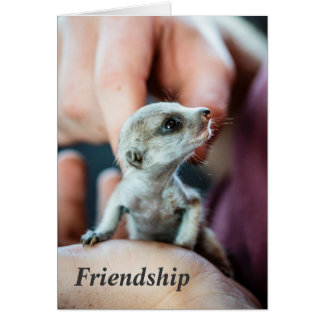 Freundschaft - FKMP Frohe Festtage Karte