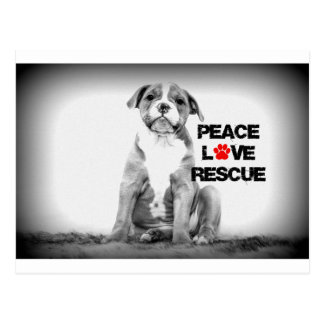 FriedensLiebe-Rettungs-Hund Postkarte