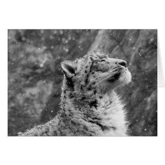 Friedlicher Schnee-Leopard Karte