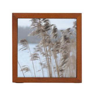 Friedliches landschaftliches Winter See-Gras-Foto Stifthalter
