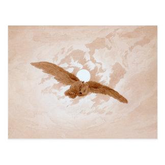 Friedrich: Eulen-Fliegen gegen einen Moonlit Postkarte