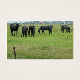 Friesische Pferde grüne Wiesen-in der kleinen Visitenkarte