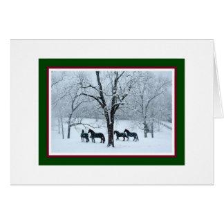 Friesische Pferde in der Schnee-Weihnachtskarte Karte