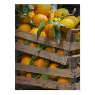 frisch ausgewählte Orangen Postkarte