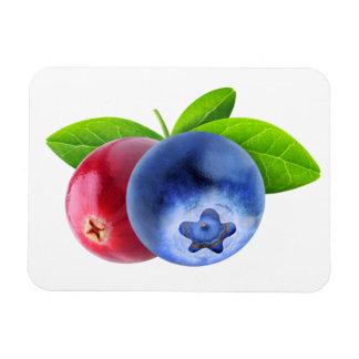 Frische Beeren Magnet