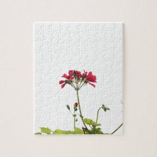 Frische Blume Puzzle