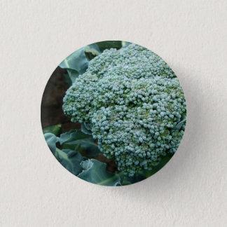 Frische Brokkoli-Blume auf Stiel Runder Button 2,5 Cm