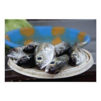 Frische Fische auf Fischmarkt Mercado de Peixe), Photographien