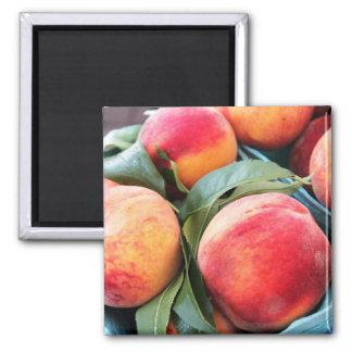 Frische Frucht - Pfirsich-Magnet Quadratischer Magnet