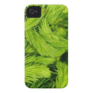Frische grüne Sprösslinge der gezierten Bäume iPhone 4 Case-Mate Hülle