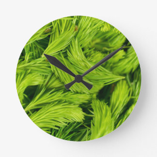 Frische grüne Sprösslinge der gezierten Bäume Runde Wanduhr