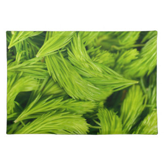 Frische grüne Sprösslinge der gezierten Bäume Stofftischset