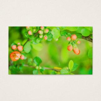 Frische grüne und rote Blumen Visitenkarte