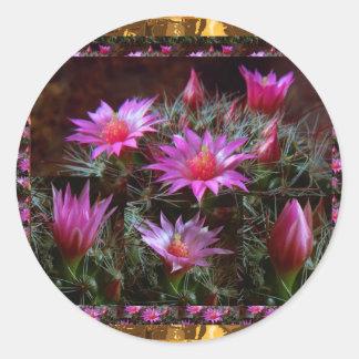 Frische KAKTUS Kaktus-Blume: Wilde exotische Runder Aufkleber