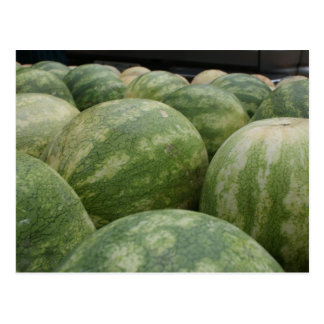 Frische Melonen Postkarte