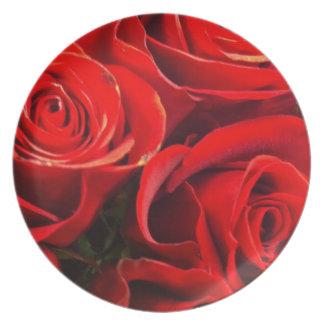 Frische Rosen Flacher Teller