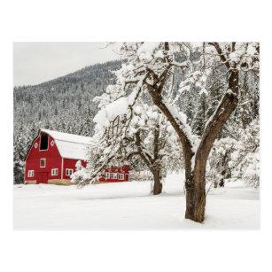 Frischer Schnee auf roter Scheune Postkarte