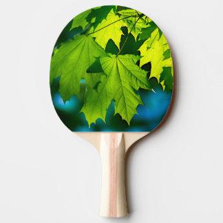 Frisches grünes Ahorn-Blätter Tischtennis Schläger