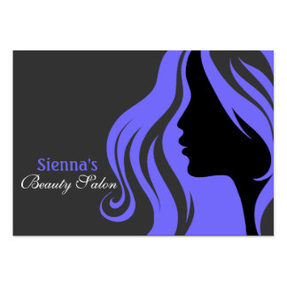 Friseur-Verabredungs-Karte (helles Schiefer-Blau) Visitenkartenvorlage