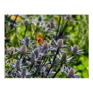 Fritillary-Schmetterling auf blauer Distel Postkarte