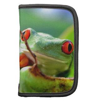 frog folio planer