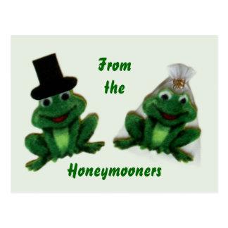 Froggy-Hochzeit - Honeymooners-Postkarte Postkarte