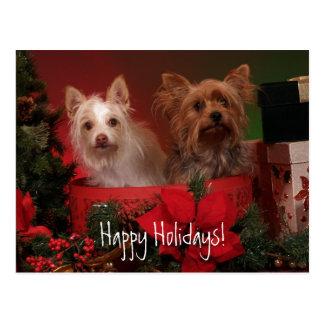 Frohe Feiertage Yorkie und Freunde Postkarte