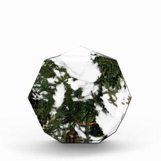 Frohe Weihnacht-Feiertagsfeiern Sankt Christus Acryl Auszeichnung
