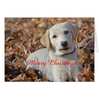 Frohe Weihnacht-Gelb Labrador retriever Karte