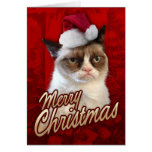 Frohe Weihnacht-mürrische Katze Karten